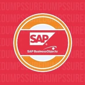 Business Objects Dumps