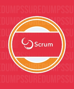 Professional Scrum Master Dumps